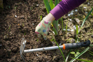 spring garden maintenance Rotherham Sheffield Doncaster
