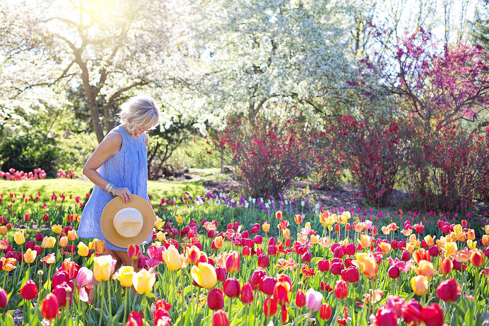 Preparing your Garden for Spring and Summer